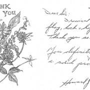 Mail Boss Testimonial from Champlain, NY