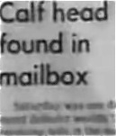 calfhead
