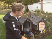 lakewood_mail_theft