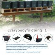 "B2B Print Advertising: ""Everybody's doing it."""