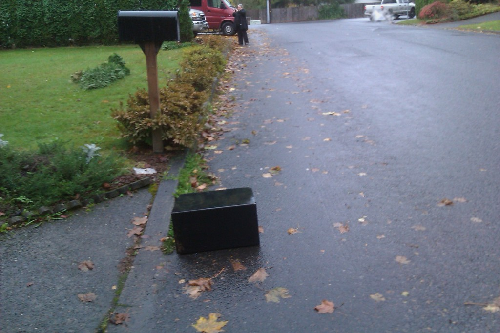 Mail Boss Survives Brutal Hit-and-Run!