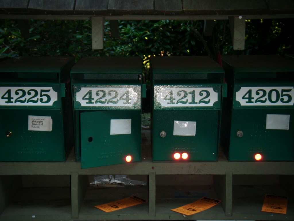 Hunts Point Mailboxes Pried Open