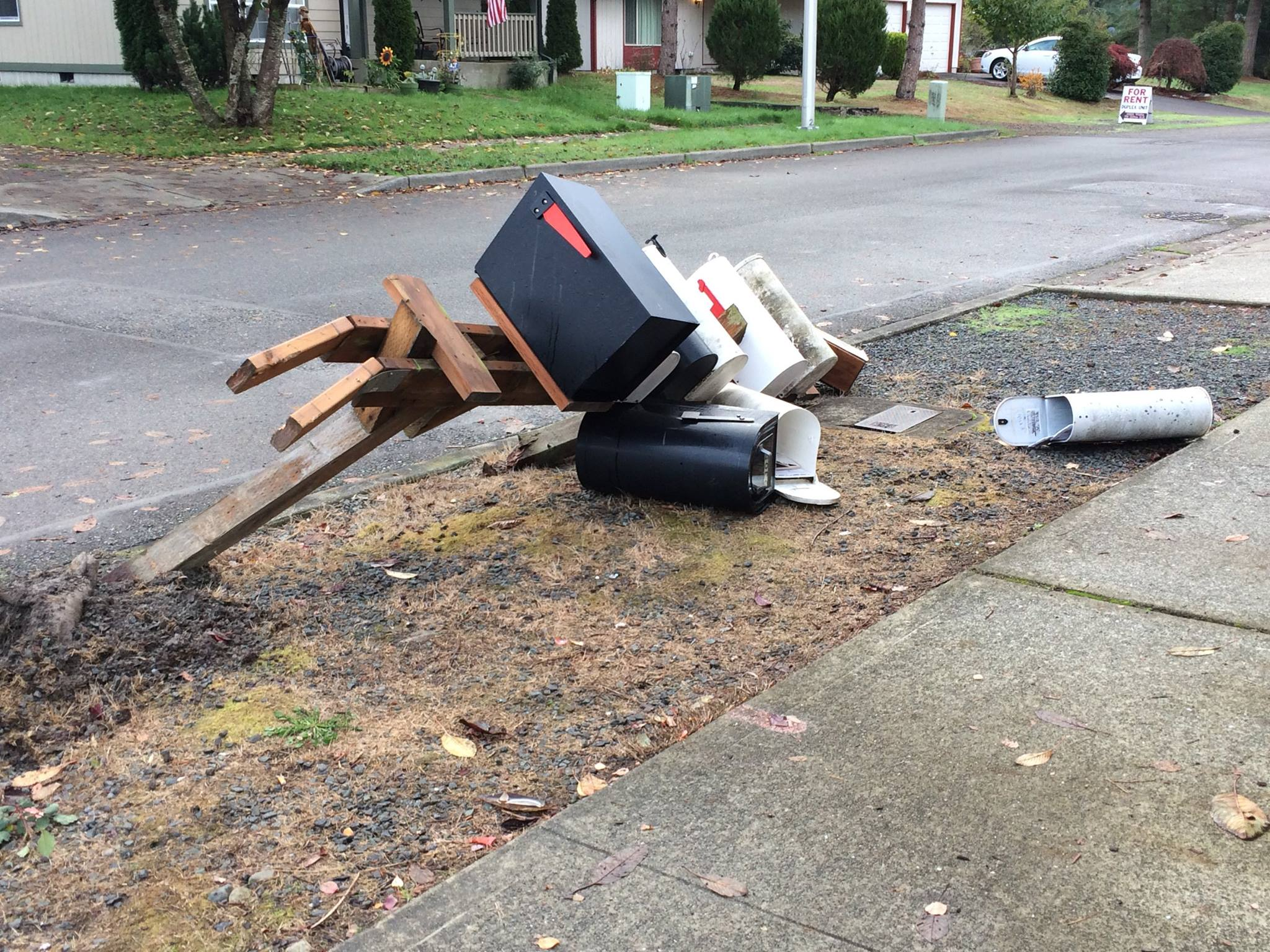 Testimonial: Mail Boss saves other mailboxes!