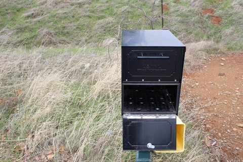 Oasis Jr Mailbox Pried Open