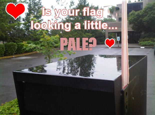 PaleFlag