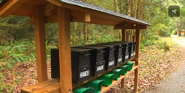 Oasis Jr Mailboxes Pried Open